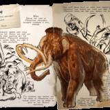 ARKモバイルのマンモス(Mammoth) | 基本情報やキブル・テイム方法・出現場所など